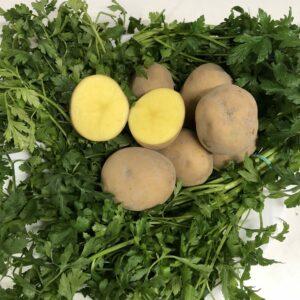 lord-ziemniak